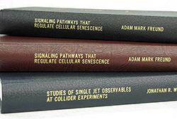 Dissertation and thesis database book